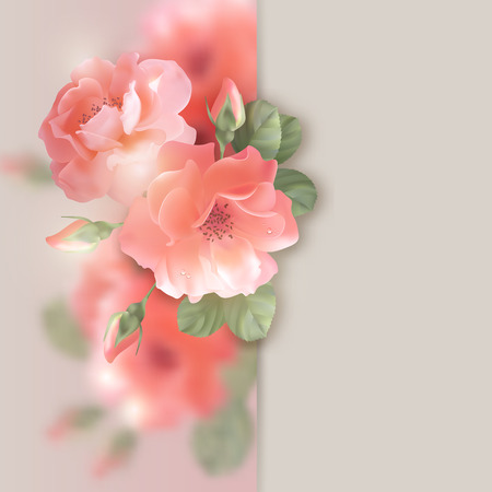 dewdrop: Card with shining flowers roses romantic floral background