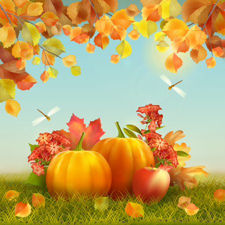 Autumn vector Thanksgiving Card with harvest, pumpkins, fallen leaves, tree branches, dragonfly