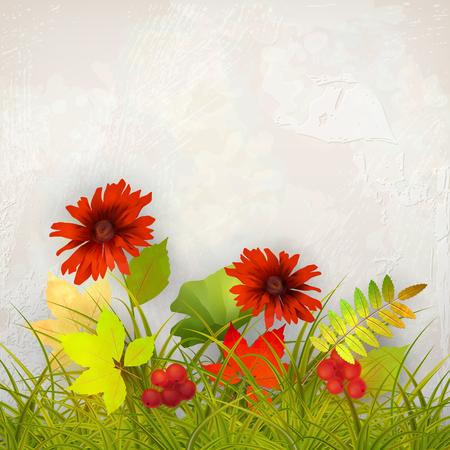 mur platre: Vecteur automne fond avec Rowan Berry et l'�rable feuilles d'automne, des fleurs, de l'herbe sur le mur de pl�tre fond Illustration