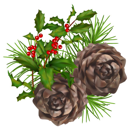 celebrate life: Christmas vector composition. Two pine cones with Holly branch on a white background Illustration