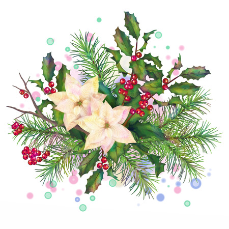 firtree: Christmas watercolor decorative composition with poinsettia flowers, Rowan, fir-tree and Holly branch on a white background