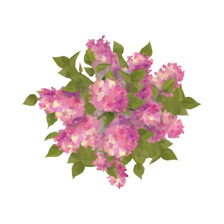 Vector bovenaanzicht boeket van lila op een witte achtergrond. Abstracte veelhoekige geometrische bloemen