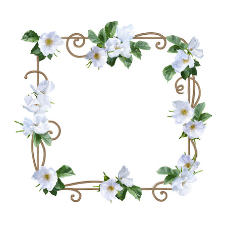painting frame: Watercolor decorative painting frame with white summer flowers Stock Photo