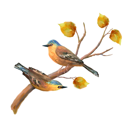 two animals: Two birds on autumn tree branch. Natural hand drawn watercolor fall illustration on white background Stock Photo