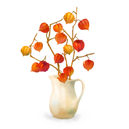 winter cherry: Watercolor hand drawn illustration. Autumn branches of physalis in a vase on white background