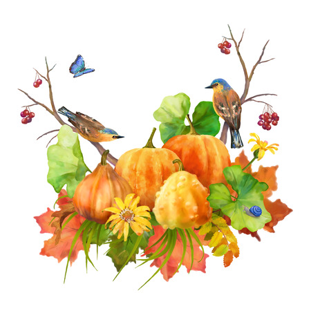 fall leaves on white: Watercolor Thanksgiving composition with pumpkin, autumn flowers, fall leaves and birds on a white background