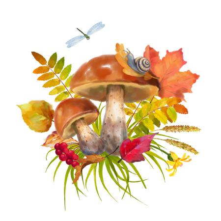 fall leaves on white: Watercolor autumn composition with mushrooms, flowers, fall leaves on a white background