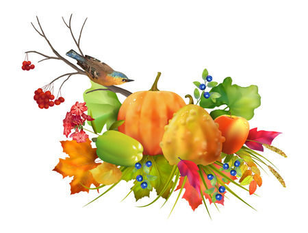 fall leaves on white: Thanksgiving vector autumn composition with pumpkin and fall leaves and birds on a white background