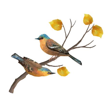 season: Two birds and autumn tree branch. Natural vector fall season illustration
