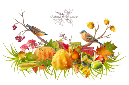 autumn flowers: Watercolor Thanksgiving composition with pumpkin, autumn flowers, fall leaves and birds on a white background