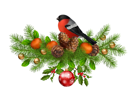 bullfinch: Merry Christmas vector greeting card. Holiday Composition of the Christmas decorations with cones, bird bullfinch on white background