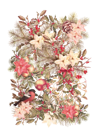 Christmas vintage watercolor decorative background. Bird, holiday ornament poinsettia flowers with Rowan and Holly branch Stock Photo