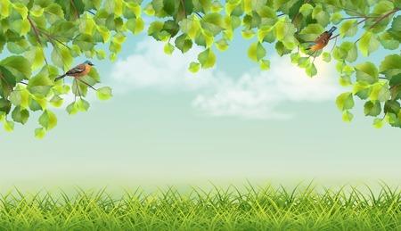 Vector Summer landscape Vettoriali