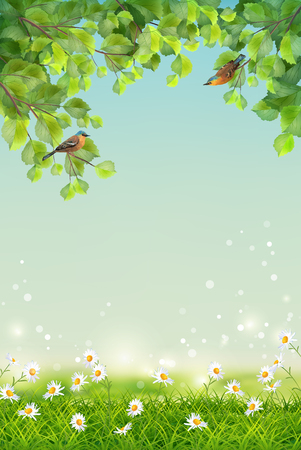 birds in tree: Vector Summer Landscape