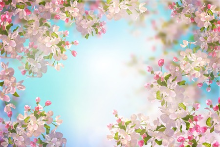 white blossom: Spring Cherry Blossom Illustration