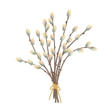 創造的な猫の柳の枝