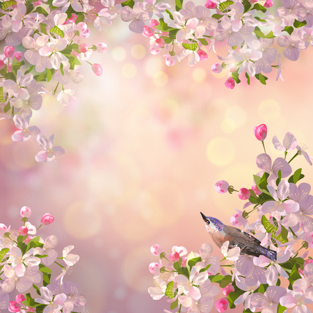 light ray: Vector background with spring Apple blossom and a bird. Blooming tree branch in springtime