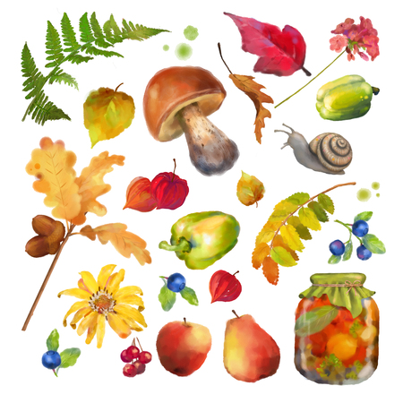 Autumn Watercolor Natural Collection Stock Photo