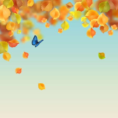 Autumn backdrop with butterfly