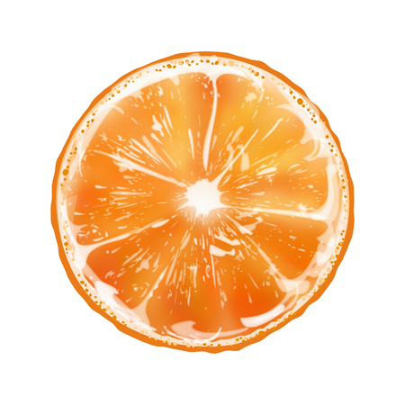 Orange Slice vector illustration isolated on white background. Illustration