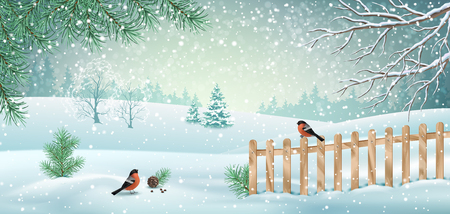 Vector winter landscape with fence, snow covered hills, bird bullfinch