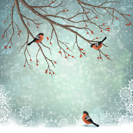 Vector winter landscape. Frosty tree and birds bullfinches