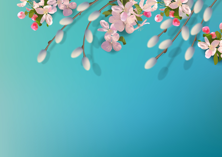 Spring vector background with pussy willow branches, fruit blossoms. Illustration