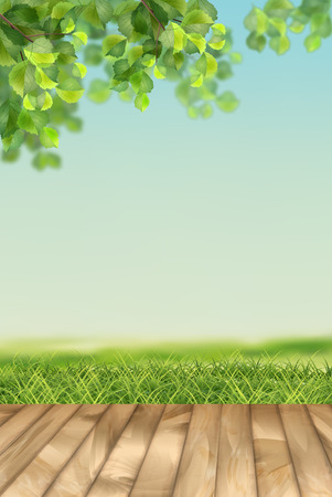 Vector Summer landscape  イラスト・ベクター素材