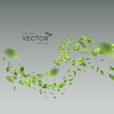 Green Flying Leaves illustration on gray background.