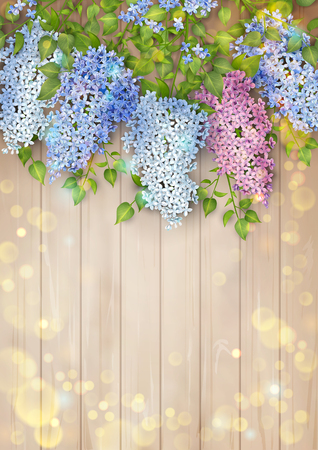 Lilac on wooden background Archivio Fotografico - 99945875