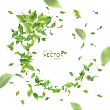 Zielone liście latające.