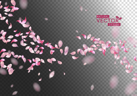 Petals Flying Background