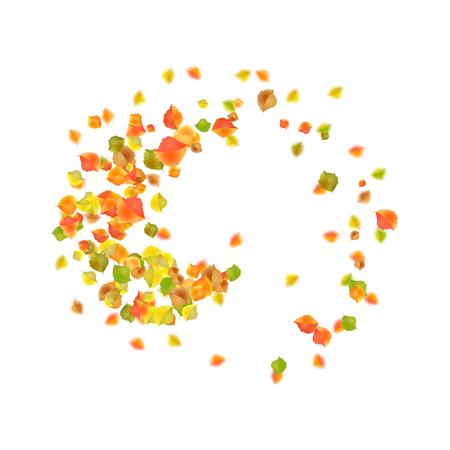 Autumn flying or falling off leaves. Vector circular vortex of fall leaves Ilustração
