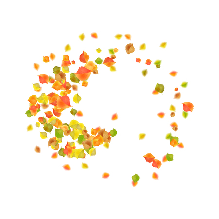 Autumn flying or falling off leaves. Vector circular vortex of fall leaves Illustration