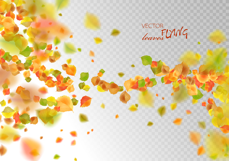 Autumn flying or falling off leaves. Vector abstract fall background Illustration