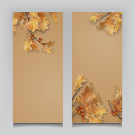 Oak branch with leaves and acorns on white background. Vector autumn banners Illustration