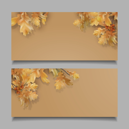 Oak branch with leaves and acorns on white background. Vector autumn banners 일러스트