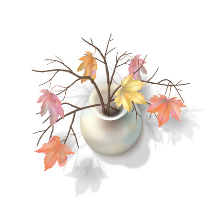 Autumn branches with maple leaves in a vase on white background. Vector top view illustration