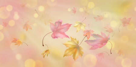 Flying autumn maple leaves. Vector background with blurred transparent elements