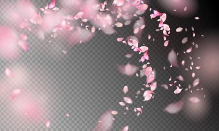 Pétales de fleurs dans le vent. Pétales volants sur fond transparent Vecteurs