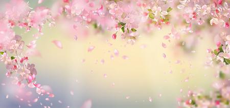 Petali volanti su sfondo primaverile. Fiori e petali al vento. Sfondo vettoriale con prugna o fiori di ciliegio. Fiori appesi