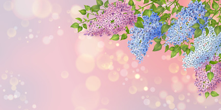 Spring vector floral background. Branch of a blossoming Lilac Stock Illustratie