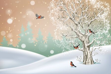 Vector winter landscape. Frosty tree, snow-covered hills and birds bullfinches Illustration