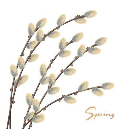 Spring Natural Background Vecteurs