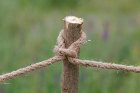 A rope, knotted a knot on a wooden column
