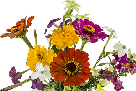 snapdragon: Flowers bouquet, isolated on white background