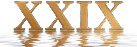Roman numeral XXIX, novem et viginti, 29, twenty nine, reflected on the water surface, isolated on  white, 3d render