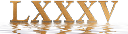 Roman numeral LXXXV, quinque et octoginta, 85, eighty five, reflected on the water surface, isolated on  white, 3d render