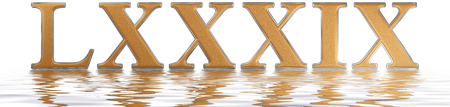 Roman numeral LXXXIX, novem et octoginta, 89, eighty nine, reflected on the water surface, isolated on  white, 3d render