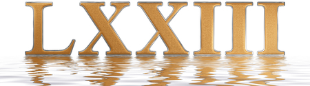 seventy: Roman numeral LXXIII, tres et septuaginta, 73, seventy three, reflected on the water surface, isolated on  white, 3d render